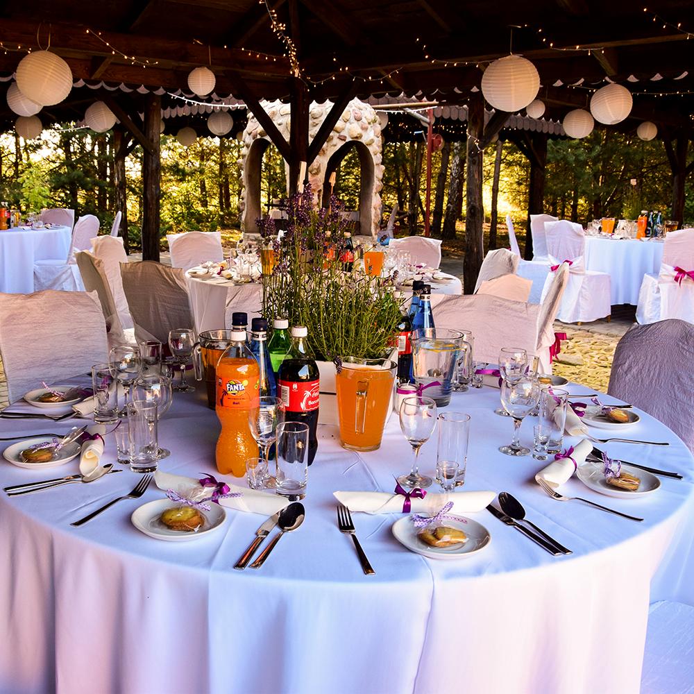 Ślub w plenerze. Organizacja imprez okolicznościowych. Gospodarstwo agroturystyczne ``Dolina Bobrów``